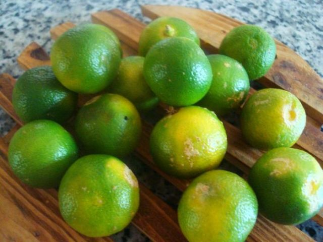 Calamansi Fruit
