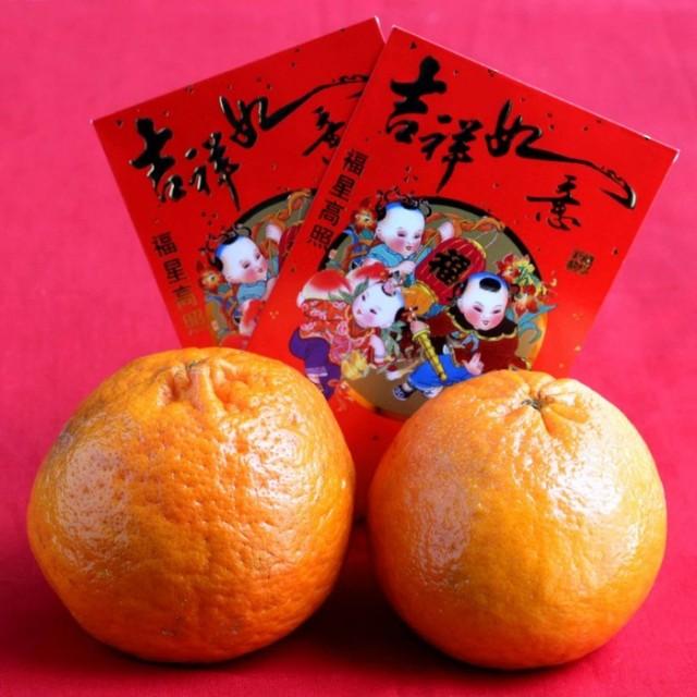 ChineseNewYear-1024x1024
