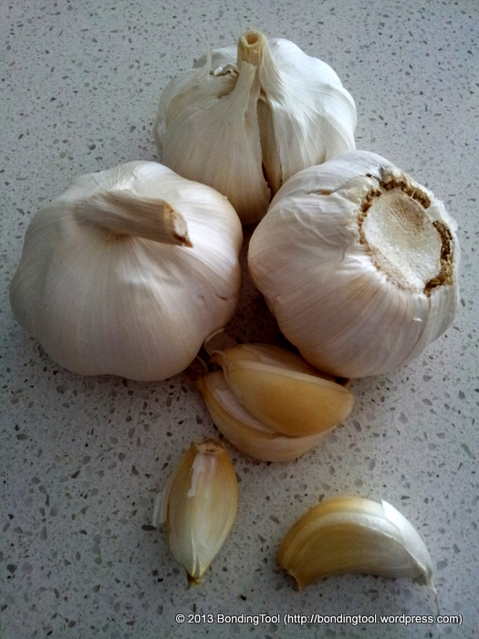 Garlic1©BondingTool