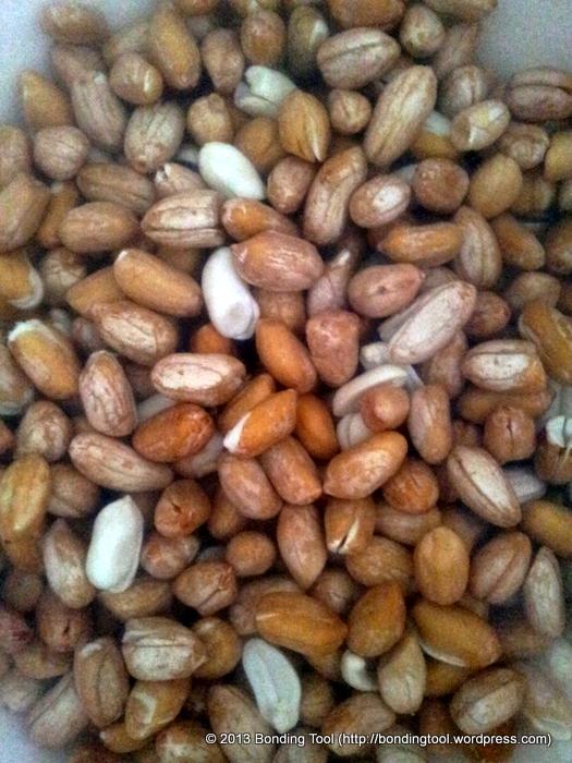 Raw Peanuts4©BondingTool