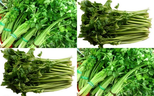 Chinese Celery is different from Cilantro in texture, crunch and taste. They are similar but not entirely the same as their western counterpart. This garnishing gives Mee Rebus a distinct flavour that enhances the gravy like no other herb can. Phot credit: Google Images.