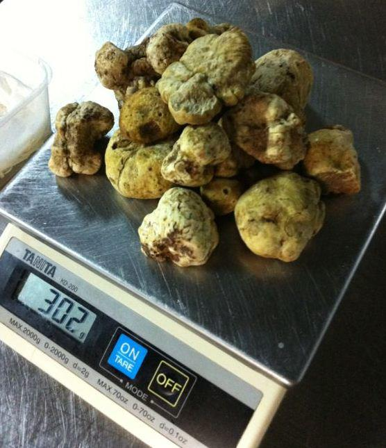 A whopping 302grams of White Truffle!