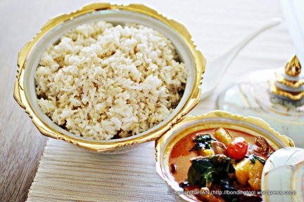 Red Duck Curry and Brown Rice.