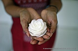 Radish Flower carved by Zaza.