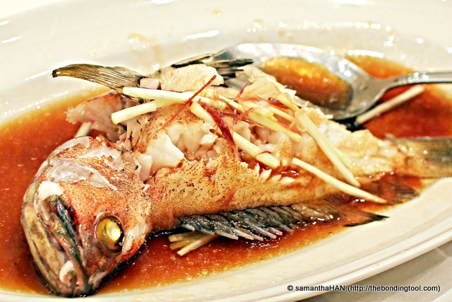 Steamed Rose Fish 清蒸玫瑰魚