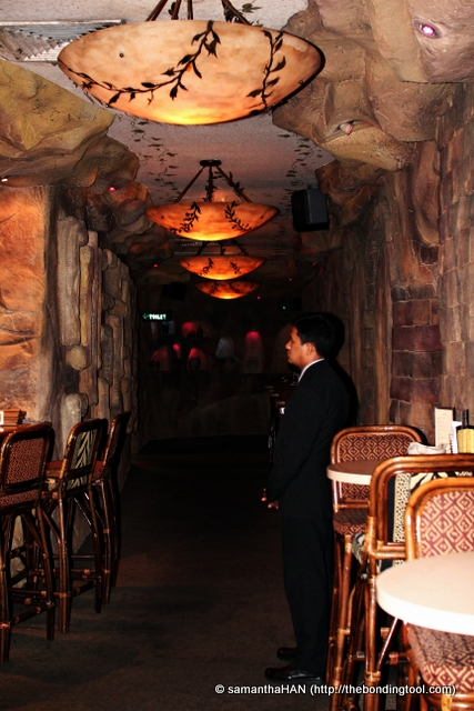 Entertainment was limited to karaoke in this Cave which is decorated with different safari themes in the rooms.