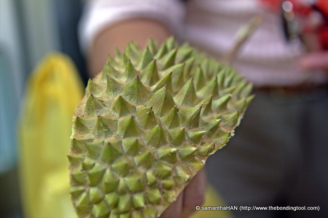Can you tell what breed of durian it is just by looking at its husk? This is MSW (Mao Shan Wang). They are currently in season now. Look at its thorns. They are faceted like diamonds or pyramids.