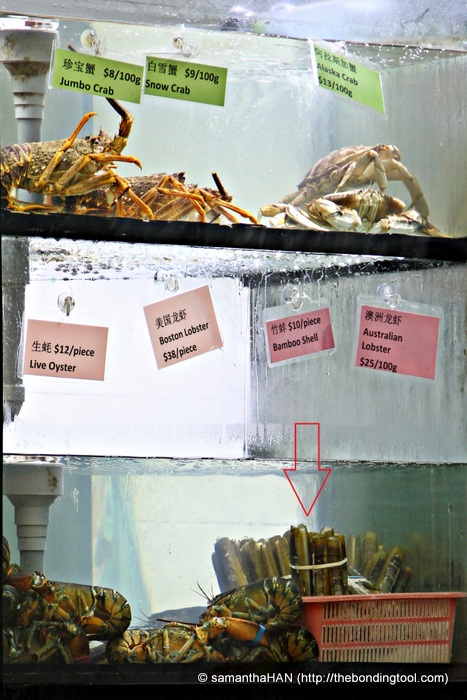 Live seafood in popular cze char restaurants are very common. I'm eyeing the bottom right corner – Bamboo Shell Clams.
