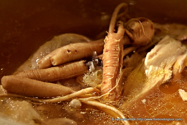 Ginseng root is a prized herb. There are different ytypes of ginseng. The Chinese believe that regular consumption of Ginseng, in moderate amount, has many health benefits like,  stress reliever, anti-aging, mental stimulant, aids in erectile dysfunction, menstrual problems, weight and blood sugar control, etc... etc... We do not eat the root. Ginseng needs long hours of double-boiling so that the beneficial properties are infused into the broth.