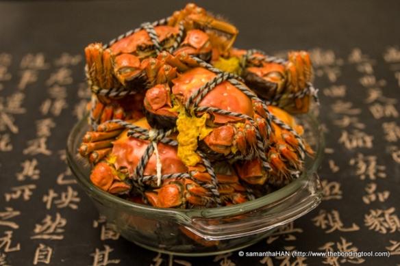 Chinese Mitten Crabs The Bonding Tool
