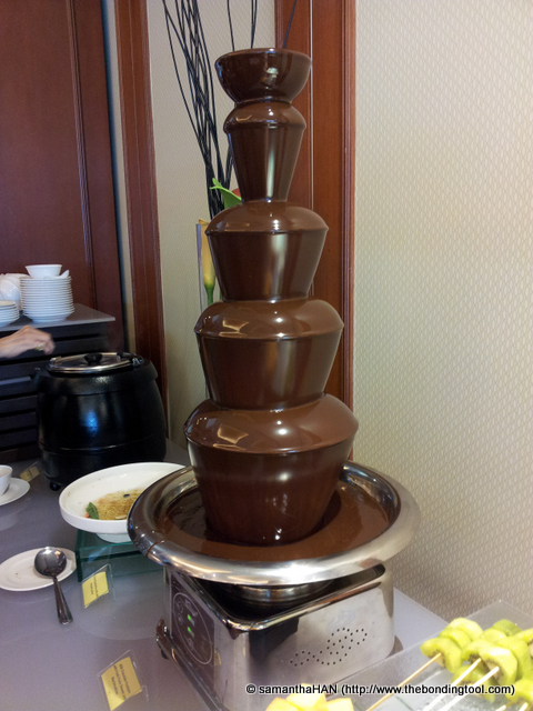Youth Milk Chocolate Fountain.