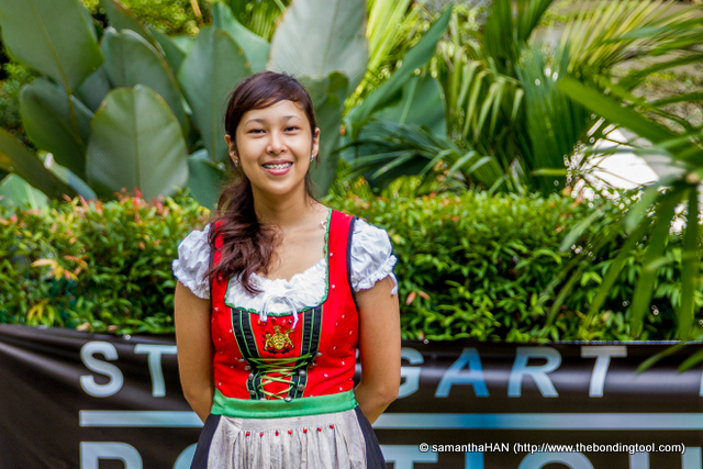 I used to call them Bavarian Barmaid costumes, now I know better. It's a dirndl and it can be traditional or otherwise. Some very well made dirndl can cost a bomb!