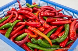 Plump chillies of quality picks.