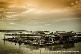 Kukup-IMG_5604-9©BondingTool