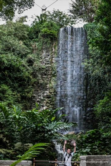 Jurong Bird Park-0488