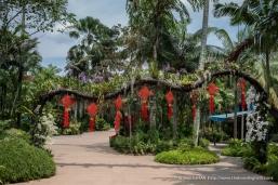 Jurong Bird Park-9893