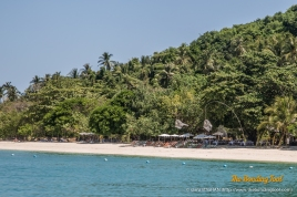 Rang Yai Island is covered with coconut and pine trees.