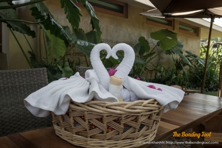 The ladies took time to make pretty towels of loving swans and...