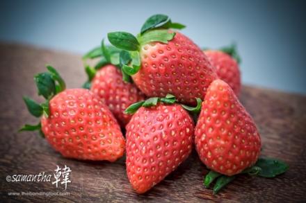 Fruits Strawberries