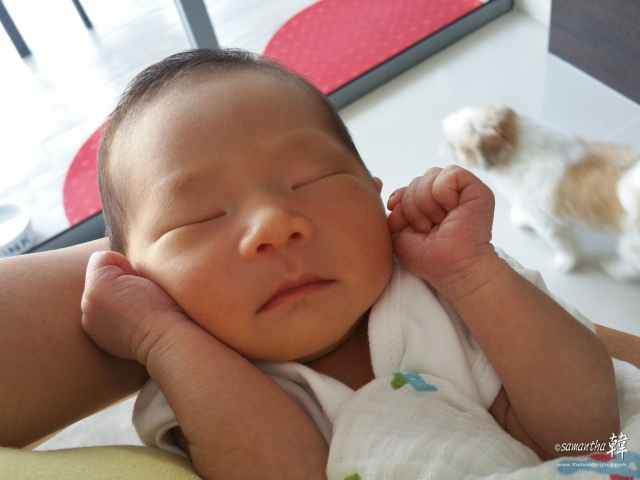 Tae Jin in my arms while his parents were having lunch.<br /> He's much rosier looking now that the yellow is gone.